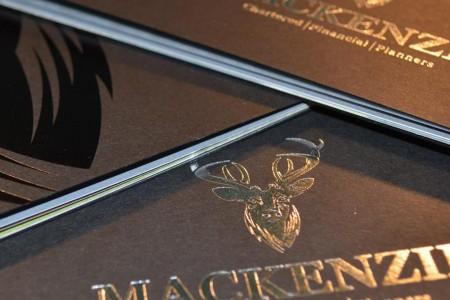 mackenzie-branding.jpg